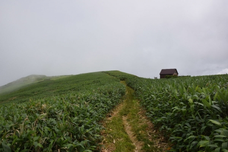 8丹後山避難小屋