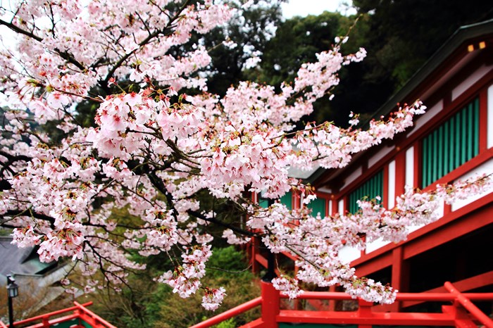 s-20140330祐徳稲荷神社1084