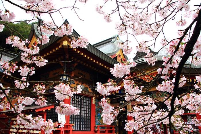 s-20140330祐徳稲荷神社1085