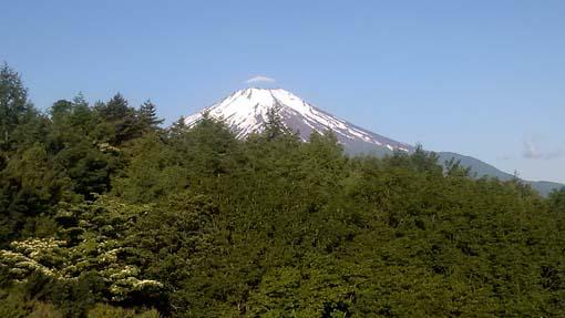 fuji-260613.jpg