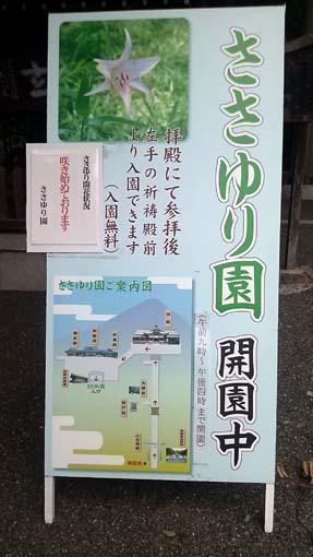 miwataisya2-260605.jpg