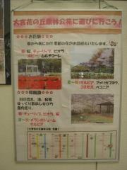 hananooka140721-115.jpg