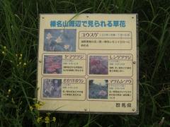 haruna140815-127.jpg