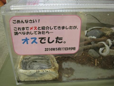 kitamoto140721-102.jpg