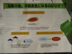 kitamoto140721-113.jpg