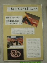 kitamoto140721-119.jpg