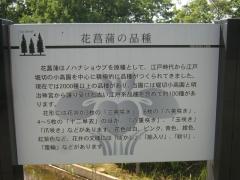 mizumoto140615-135.jpg