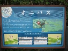 mizumoto140814-110.jpg