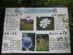 oomiya140608-119.jpg