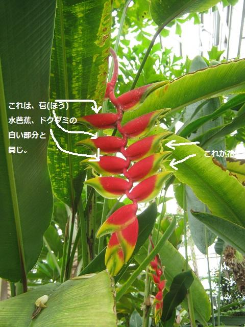 oosaki140608-112.jpg