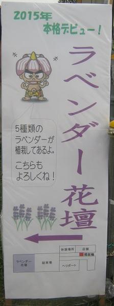 shoubu140621-113.jpg