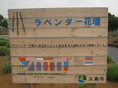 shoubu140621-114.jpg