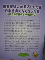 tukuba140518-108.jpg
