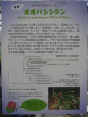 tukuba140518-109.jpg