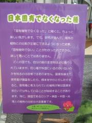 tukuba140518-110.jpg