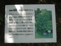 tukuba140518-129.jpg