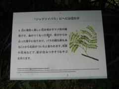 tukuba140518-143.jpg