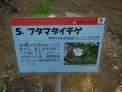 tukuba140518-155.jpg