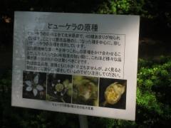 tukuba140518-172.jpg