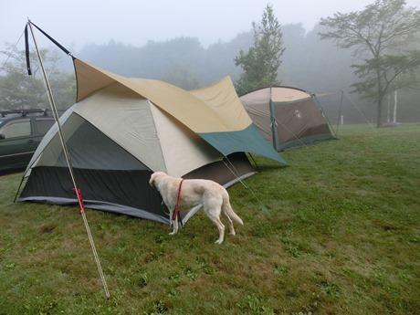 キャンプ場の朝は早い。