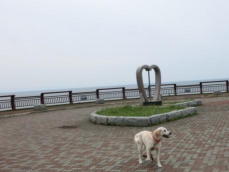 海を見渡せるデートスポット