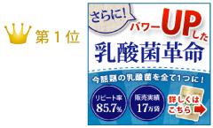 効果的な乳酸菌サプリメント
