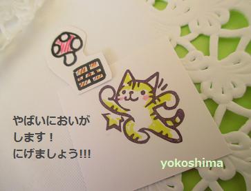 2014 2 22やっほ~猫3
