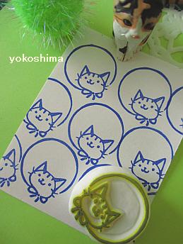 2014 5 7猫まる1
