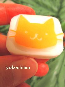2014 6 13ベタ顔猫1