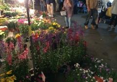 出店の花屋