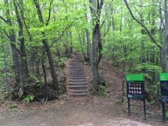 白石CR 遊歩道の階段