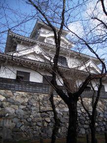 shiga_2014030831_nagahama castle_nikon ss