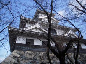 shiga_2014030832_nagahama castle_nikon ss