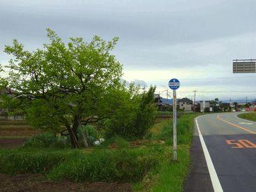 bus stop 20140429_06s