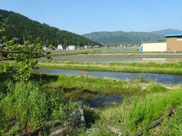 kinomoto_67_near shizugatake_satoyama 15