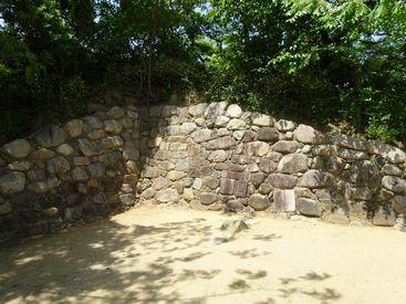 itami 20140524_10_arioka castle 15