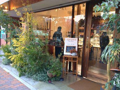l'avenue shop 20131208_01 s