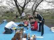 蓮田で花見3