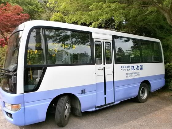 P5040008s.jpg