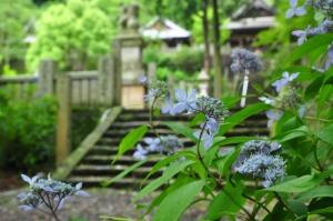 2惣河内神社14.06.06