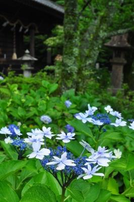 1惣河内神社14.07.04