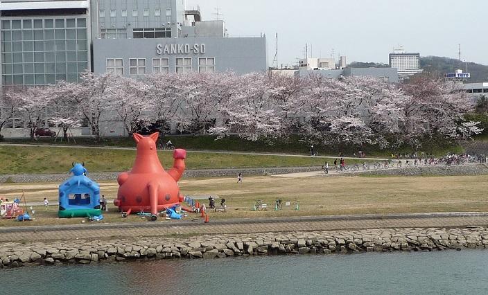 2014.03.31asahigawasakura 001