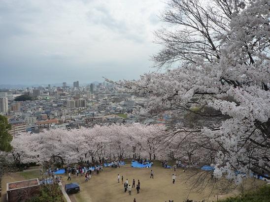 2014.04.03handayama 018