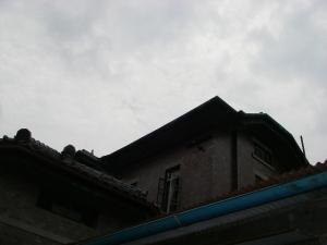 IMGP2791.jpg