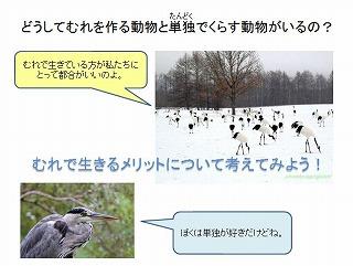 slide10w.jpg