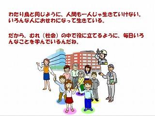 slide11w.jpg