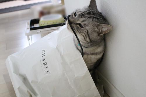 大好き紙袋2