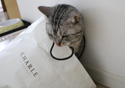 大好き紙袋5