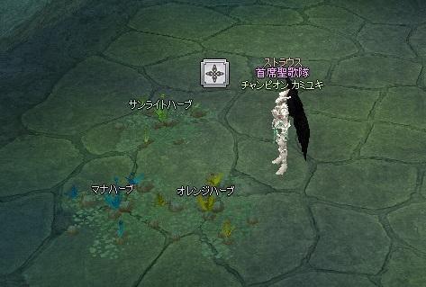 mabinogi_2014_07_10_001.jpg