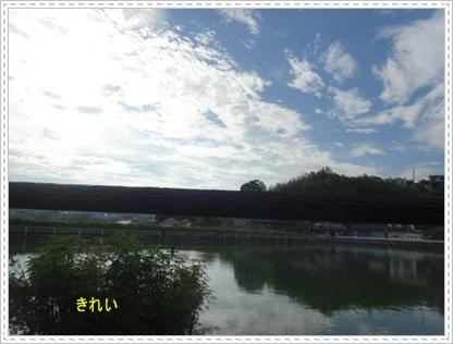 DSC00291_20140715000030f64.jpg